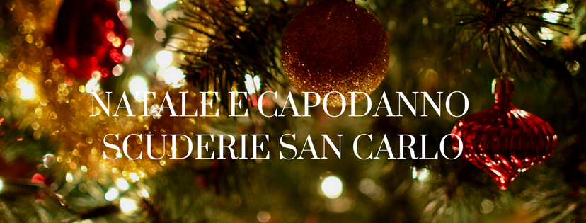 Gustoso Natale e Delizioso Capodanno!
